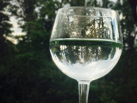 Sophomore Brennan Bregitzer took this image for the Glass Photo Challenge.