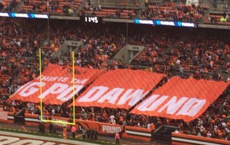The Browns' Curse Countdown